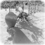 5. Urnan på Stenbacka