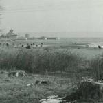 11. Vy mot lotsplatsen ca 1960
