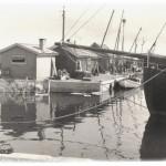 11. Fiskehamnen