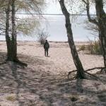 11a. Vita Sand på Skäggenäs