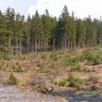 2a. Utsikt från Alkullaberget 2006