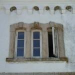 Fönster och svalbon.