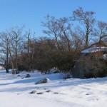 9f. Vinter på Rönneskär